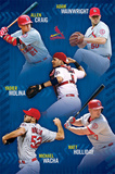 St. Louis Cardinals - Team 14 Poster
