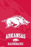 University Of Arkansas - Logo 14 Plakater