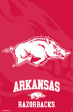University Of Arkansas - Logo 14 Prints