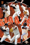 San Francisco Giants - Team 14 Print