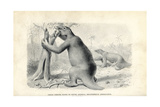 Megatherium Americanum, Great Ground Sloth of South America Giclee Print by J. Smit