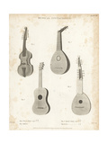 Viol D'Amour, Mandore, Spanish Guitar and Lute Giclee Print by T. Webster
