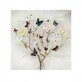 Tree of Butterflies Posters by Ian Winstanley