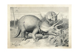 Triceratops Prorsus Giclee Print by J. Smit