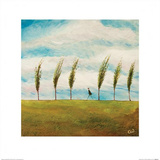 Barton Breeze Prints by Chris Williamson