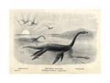 Plesiosaurus Dolichodeirus with Cuttlefish and Pterodactyls Giclee Print by J. Smit