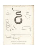 Hunting Horns, Serpent, French Horn, Bugle and Trombone Giclee Print by T. Webster