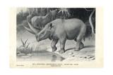 Arsinoitherium Zitteli Giclee Print by J. Smit