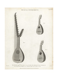 Arch Lute, Mandolin and Mandola Giclee Print by T. Webster
