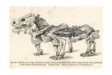 Pareiasaurus Serridens Skeleton Giclee Print by J. Smit