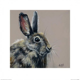 Bright Eyes Prints by Louise Brown