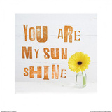 You Are My Sun Shine Prints by Howard Shooter