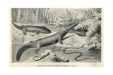 Amphibians of the Permian Period Giclee Print by J. Smit