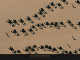 Caravanes de Dromadaires près de Fachi Plakater af Yann Arthus-Bertrand