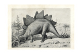 Stegosaurus Ungulatus, Dubious Species Giclee Print by J. Smit