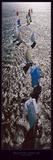 Descente sous spi Affiches par Philip Plisson