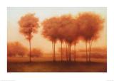 Auburn Shade Prints by Darlou Gams