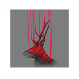 Wild Stag Poster by Louise McNaught