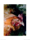 Brown Chicken Art by Simon Howden