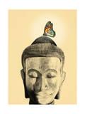 Buddha Tranquil Giclee Print by Budi Kwan