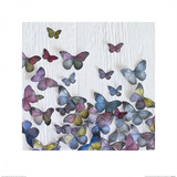 Butterfly Random Prints by Howard Shooter