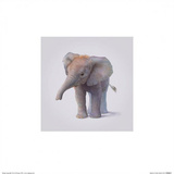 Elephant Art by John Butler Art