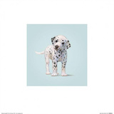 Dog Prints by John Butler Art