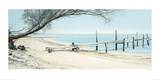 Beach Tree With Jetty Posters by Alexander Slatter