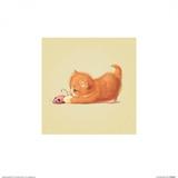 Cat Plakater af John Butler Art