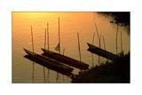 Thailand, Fishing Boats on the Mekong Photographic Print by Stephen Vaughan