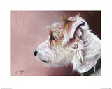 Parsons Terrier Print by Jane Booth
