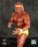 World Wrestling Entertainment - Hulk Hogan Posed Photo
