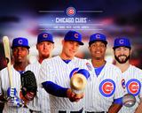 Chicago Cubs 2014 Team Composite Photo