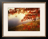 Sunrise Through Autumn Leaves Framed Photographic Print by Joseph Sohm