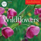 Wildflowers - 2015 Calendar Calendars