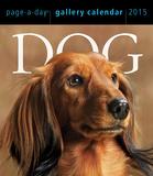 Dog Gallery - 2015 Calendar Calendars