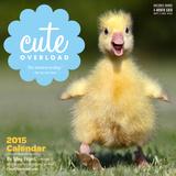 Cute Overload - 2015 Calendar Calendars