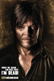 Walking Dead - Daryl Shadows Posters