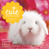 Cute Overload - 2015 Mini Calendars