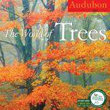 The World of Trees - 2015 Calendar Calendars
