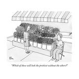 """Which of these will look the prettiest without the others?"" - New Yorker Cartoon Premium Giclee Print by Amy Hwang"