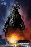 Godzilla - Airport Posters