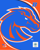 Boise St. University Broncos Team Logo Photo