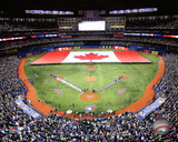 Toronto Blue Jays - Rogers Centre 2014 Photo