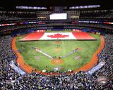 Toronto Blue Jays - Rogers Centre 2014 Photo