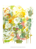 Jodi Fuchs - Spring has Sprung I Obrazy