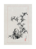 Japan: Bamboo, 1878 Giclee Print by Settei Haswgawa