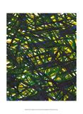 Jodi Fuchs - Green Thicket II Umělecké plakáty