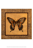 Crackled Butterfly - Swallowtail Prints by Wendy Russell