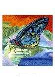Poised Butterfly II Art by Carolee Vitaletti